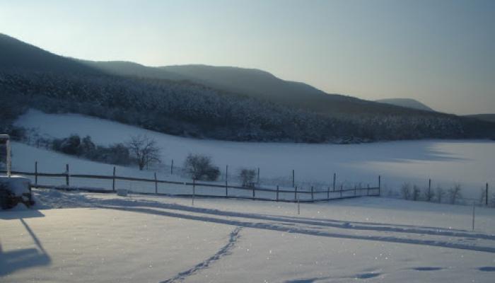 2009.02.15 Tél a Hegyes Dűlőn 018_resize.jpg
