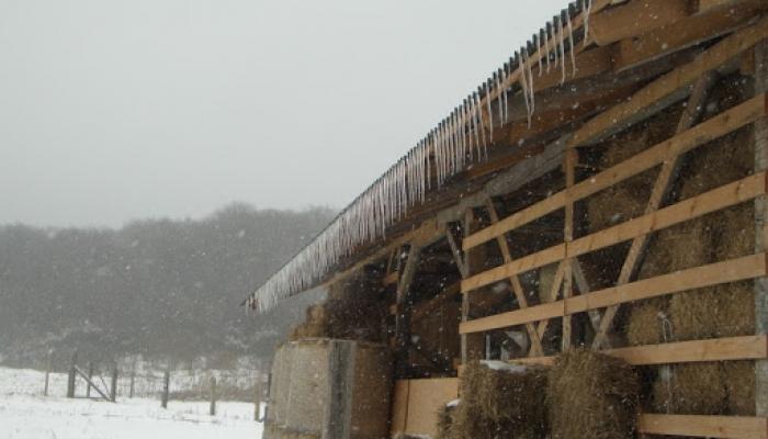 2009.02.15 Tél a Hegyes Dűlőn 008_resize.jpg
