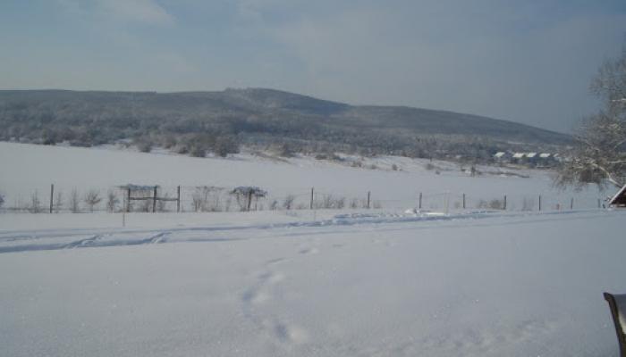 2009.02.15 Tél a Hegyes Dűlőn 015_resize.jpg