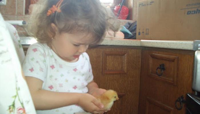 2008. május - Viki és a kispipik 003_resize.jpg