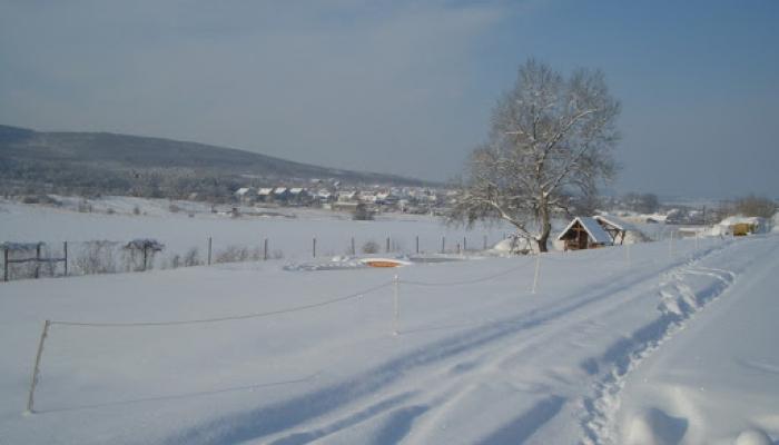2009.02.15 Tél a Hegyes Dűlőn 012_resize.jpg