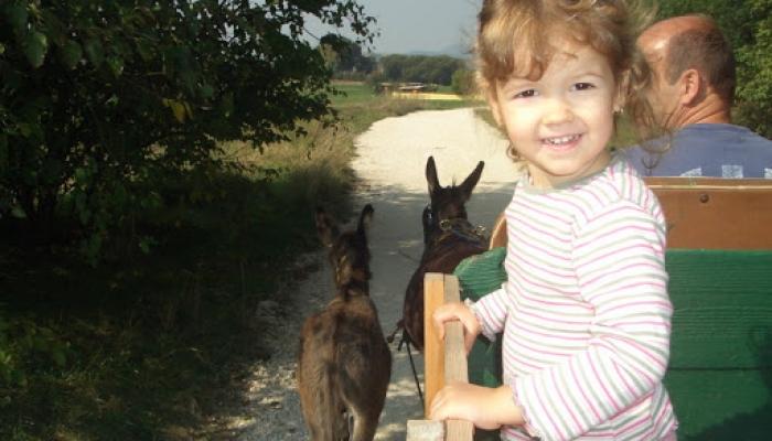 2008.09.30 Viki Cséven a csacsiskordén 007_resize.jpg